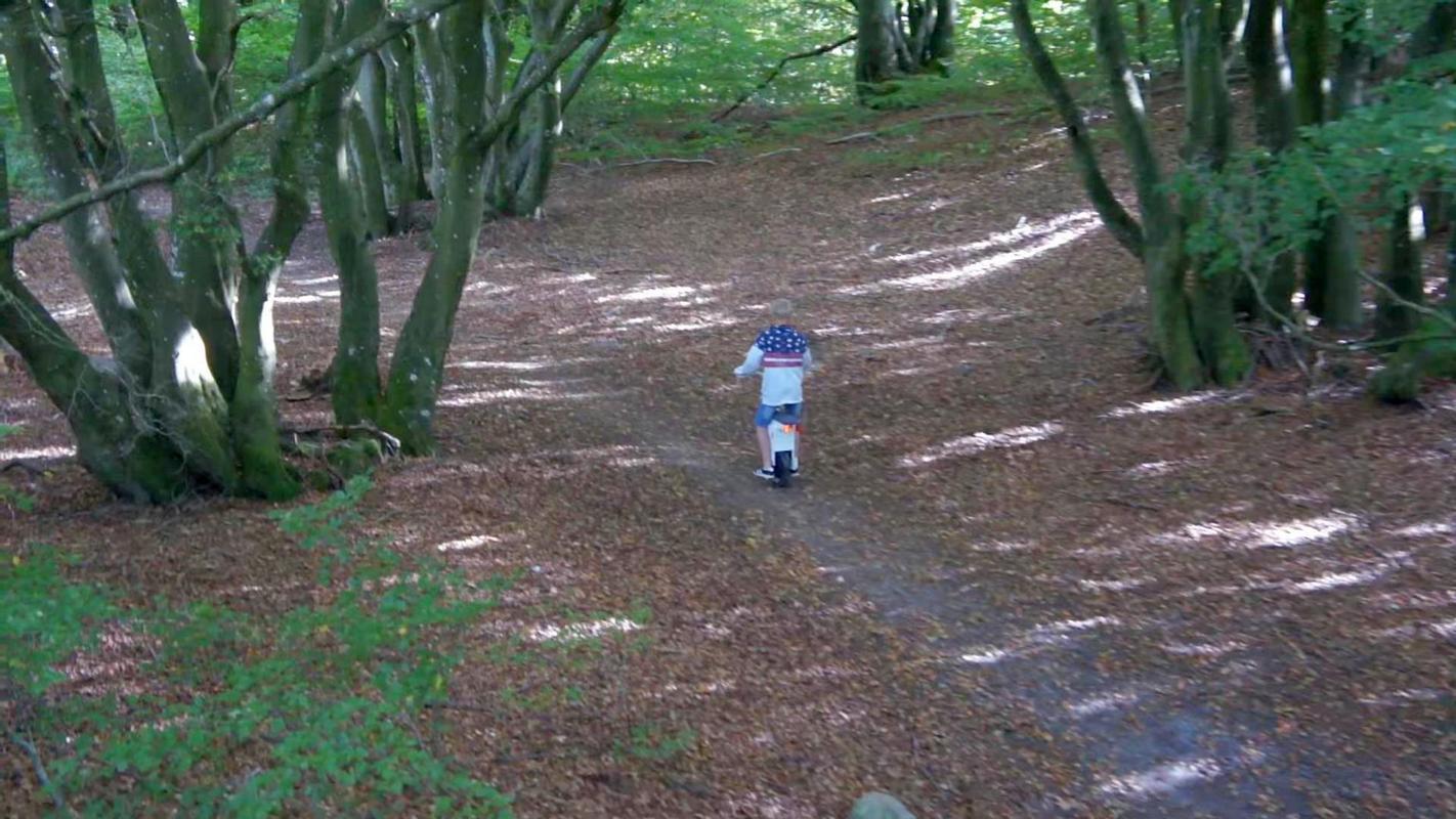 Моноколесо с рулем по лесу